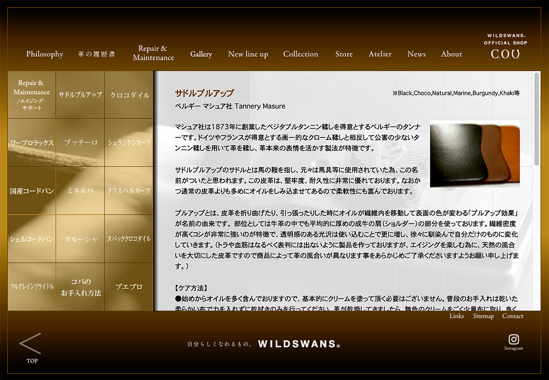 WILDSWANSメンテンス内容